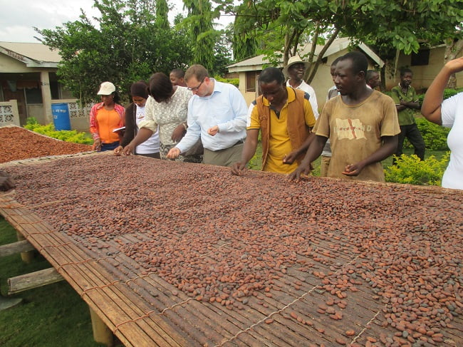 Now Is The Time For Partnership To Transform Africa's Cocoa Industry